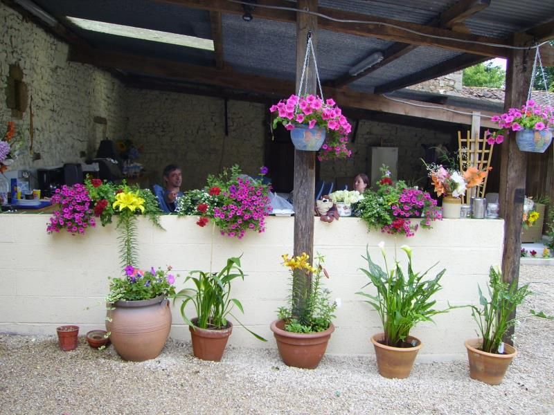 FLOWERS IN COURTYARD.JPG_2