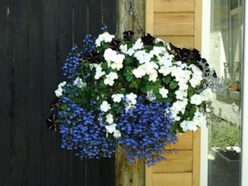 Lemontreehouse-détail-bouquet-sit.jpg_10